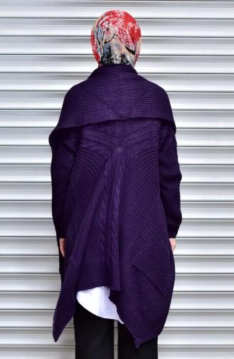 Purple Tricot 2517-06