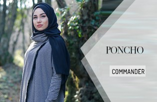 Modèles de Poncho