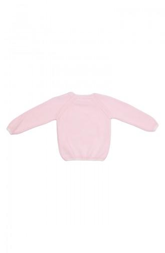 Pink Trui 21013-02