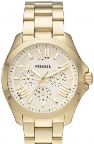 Fossil Am4510 Montre Pour Femme 4510