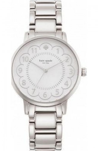 Silver Gray Watch 1YRU0792