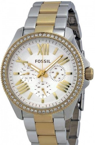 Fossil Women´s Watch Am4543 4543
