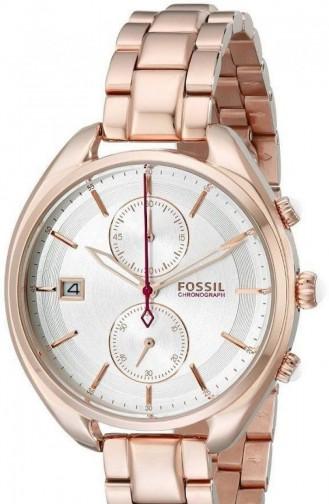 Fossil Women´s Watch Ch2977 2977