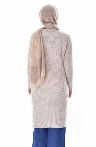 Long Pull Tricot 4203-03 Pierre 4203-03