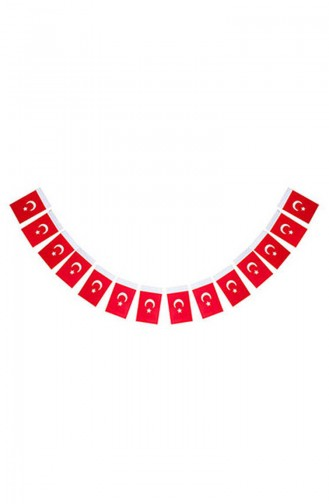 Red Party Materials 0725