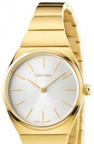 Calvin Klein K6C23546 Montre Pour Femme 6C23546
