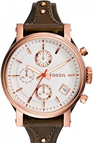 Brown Watch 3616