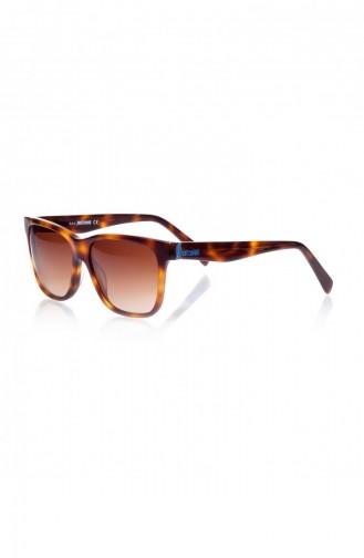Sunglasses 558575