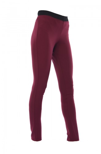 Claret red Tights 20003-04