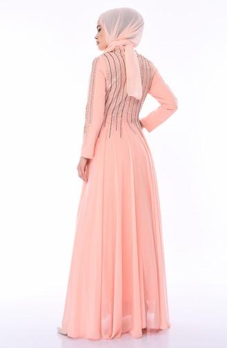 Taş Baskılı Abiye Elbise 2012-01 Somon