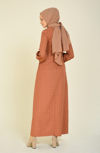 Sleeved Pleated Dress Brown Tobacco 2089-01