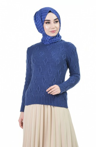 Pull Pourpre 8036-06