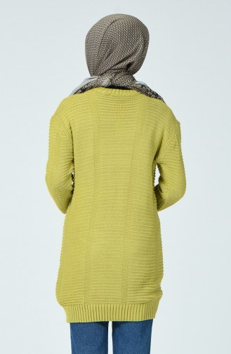 Tricot Sweater Pistachio green 1930-03