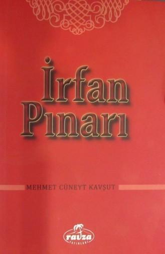 İrfan Pınarı 1145785