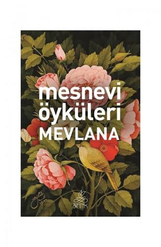 Mesnevi Öyküleri Mevlana - 9786054985715 9786054985715