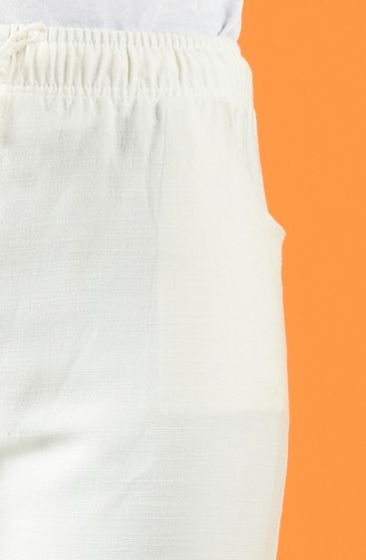 Naturfarbe Hose 4100PNT-01