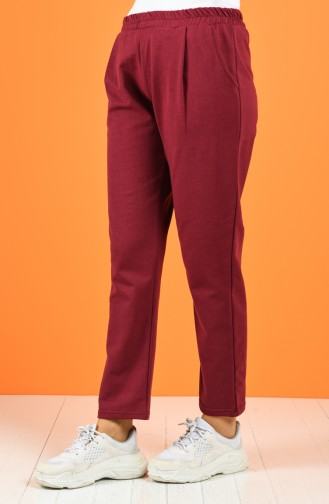 Claret red Pants 8127-02