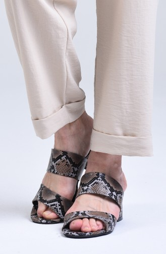 Chaussures a Talons Couleur Brun 9102-13