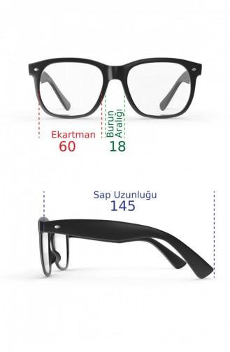 Sunglasses 01.O-04.04079