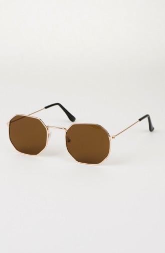 Brown Sunglasses 008-03