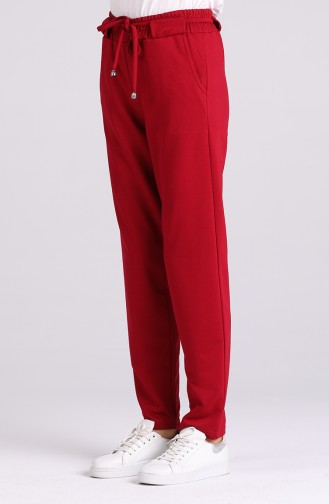 Pantalon Bordeaux 3192-02