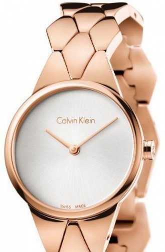 Bronze Watch 6E23646