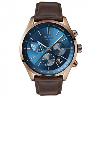 Brown Watch 1513604