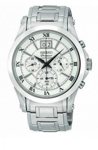 Silver Gray Watch 063P1