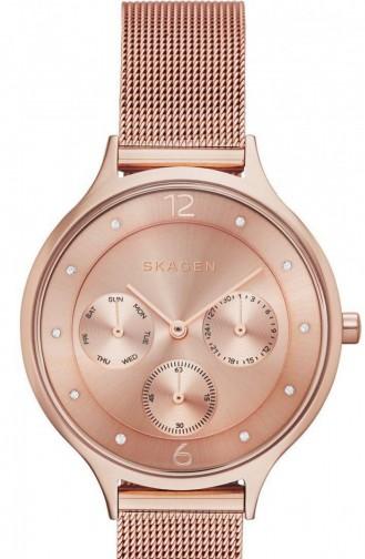 Bronze Watch 2314