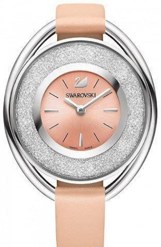 Bronzfarben Uhren 5158546