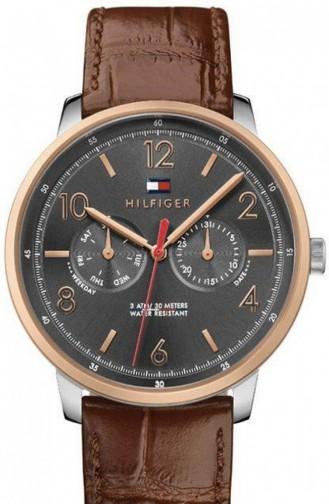 Brown Horloge 1791357