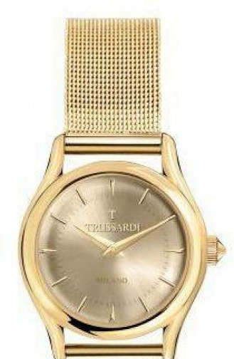 Montre Or 2453127501