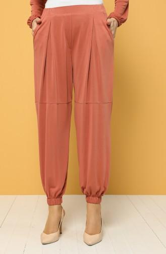 Pantalon Couleur brique 2185-04