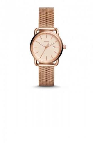 Bronze Wrist Watch 4333