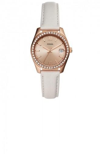White Wrist Watch 4556