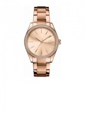 Bronzfarben Uhren 2001084