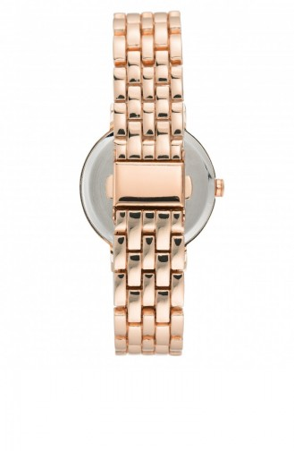 Rose Tan Wrist Watch 2402SVRG