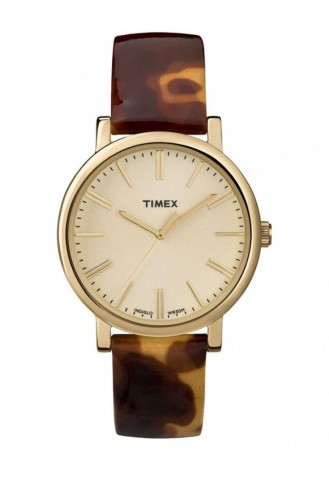 Brown Wrist Watch 2P237