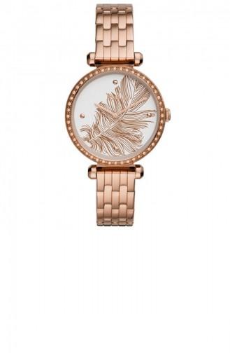 Bronze Wrist Watch 3593