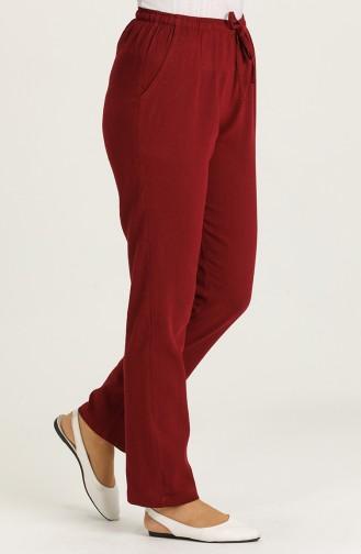 Pantalon Bordeaux 14001-01