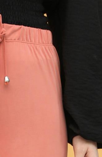 Pantalon Couleur brique 1325-01