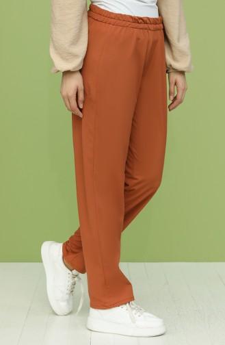 Pantalon Couleur brique 1592-04