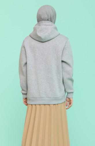 Sweatshirt Gris 29662-03