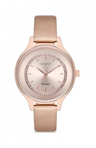 Bronze Horloge 8902712040317