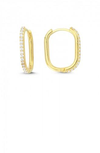 Trendy Oval Küpe Taşlı İnce Altın Standart Akp0013 2977
