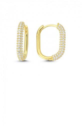Trendy Oval Taşlı Gümüş Küpe Altın Standart Akp0016 2973