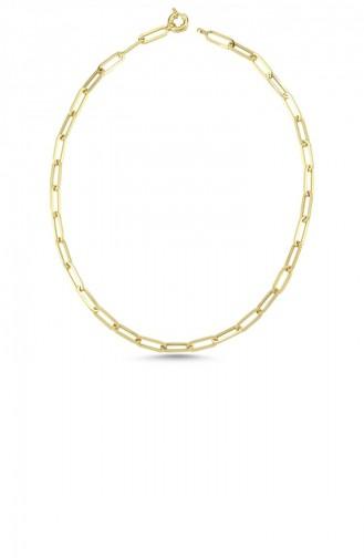 Gold Colour Necklace 51