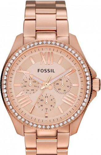 Fossil Am4483 Kadın Kol Saati