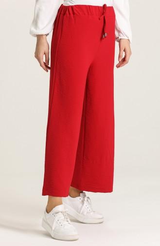 Claret Red Pants 9036-02