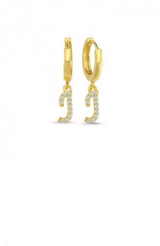 Goldfarbig Ohrring 006-3801